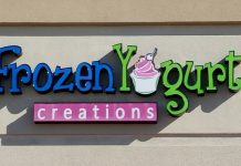 frozen yogurt creations